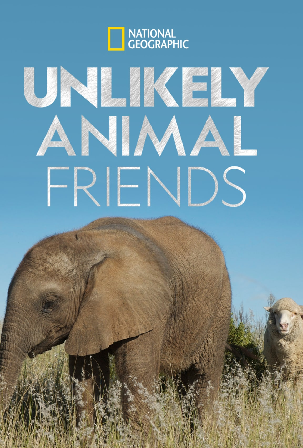 Unlikely Animal Friends (2012)