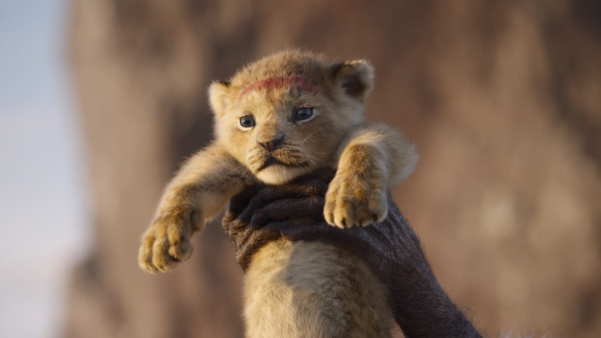 The Lion King 2019 Disney Movies