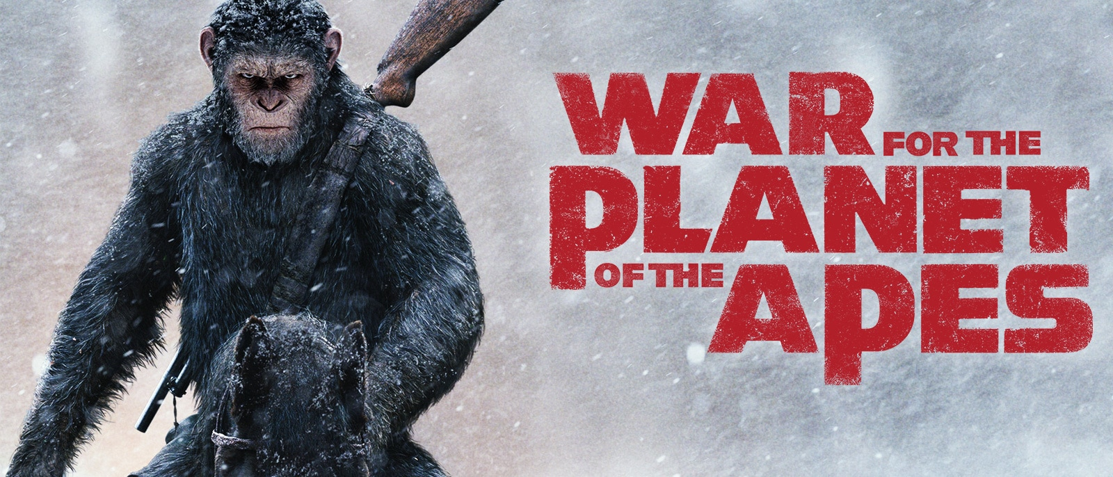 War for the Planet of the Apes Hero