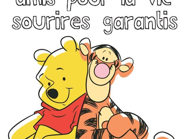 """Les bons mots de Winnie - Les devises du jour : """"Amis pour la vie, sourires garantis"""""""