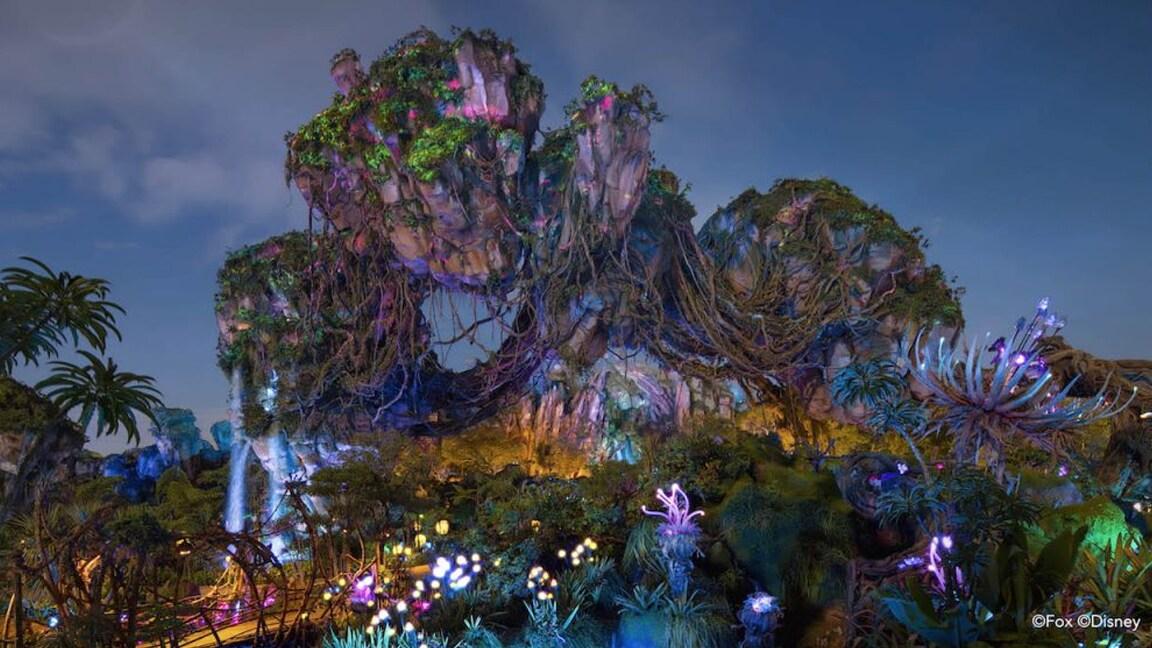 Encuentra tu zen con escenas pacíficas en Walt Disney World Resort